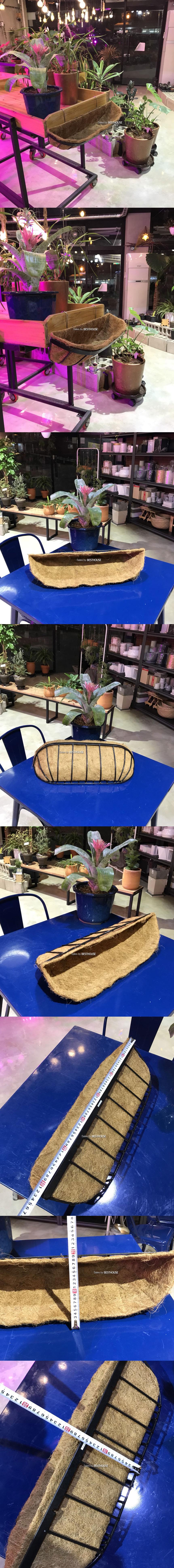 베하.벽걸이형 코코넛 야자 행잉 바구니(중) 62x20x20cm
